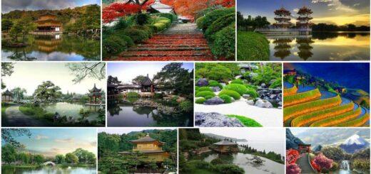 Asian Landscapes