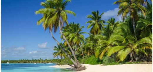 Best Travel Time and Climate for Aruba